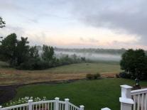 Fog 2018