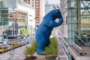 Convention Center Bear